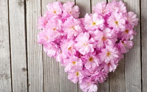 Pink-flowers-love-heart-wood-board_2560x1600